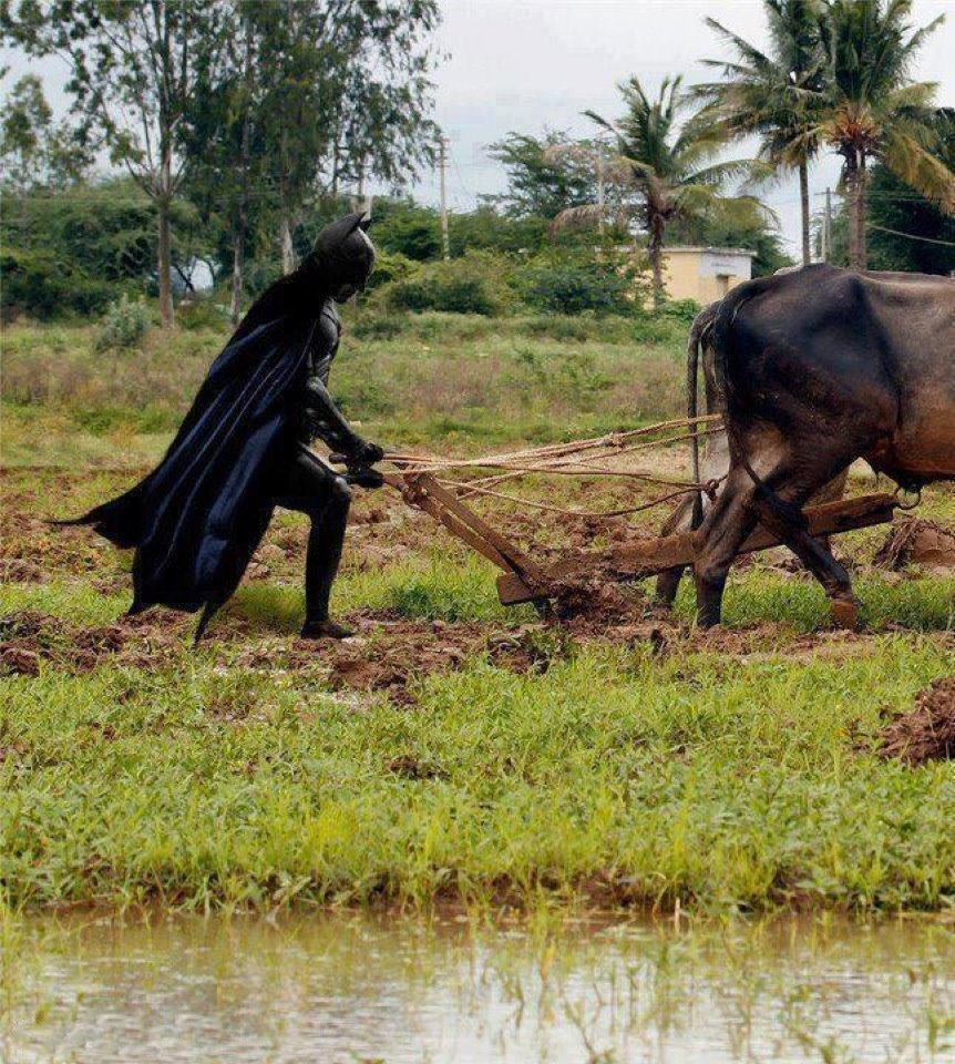 Dress as Batman and plough a field