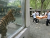 best zoo photo ever