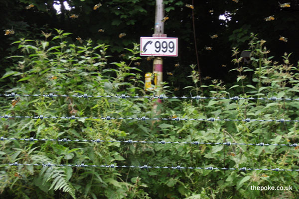 Local Councils ring-fence emergency services