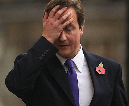 Cameron struggles to tell child 'what a vagina looks like'