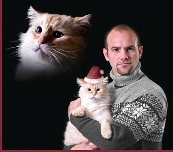 Awkward christmas photos cat