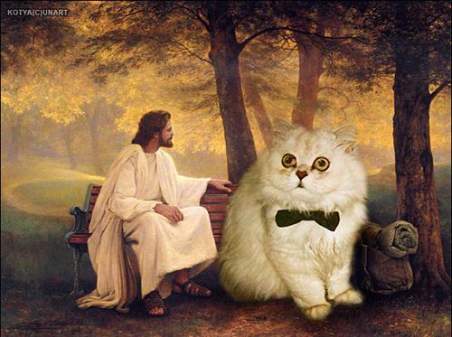 Jesus Vs The Internet The Poke