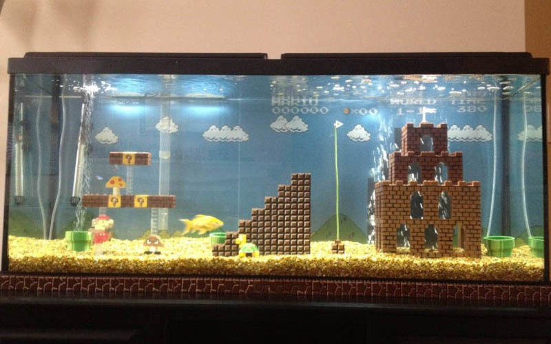 super mario fish tank the poke