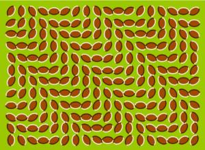 imagesmoving-patterns
