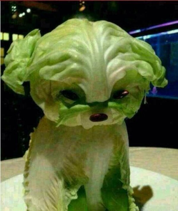 How To Make A Lettuce Dog The Poke