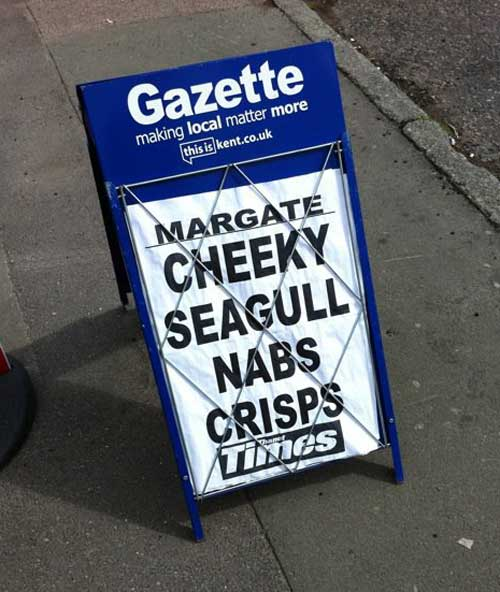 margate-seagull-thief