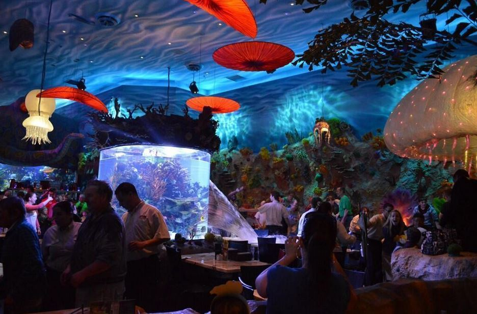 Giant fish tank springs a leak at disneyland the poke for Fishing at disney world