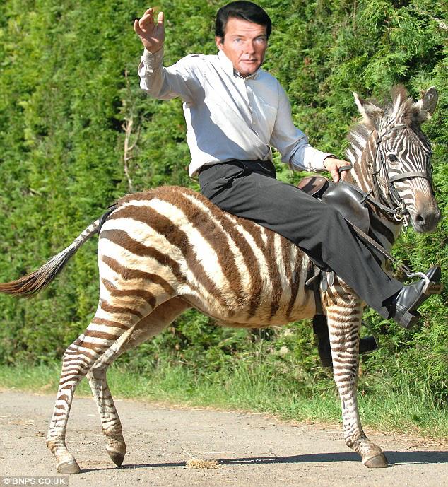 roger moore riding a zebra the poke
