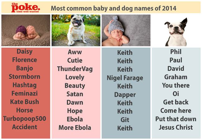 Female Dog Names With S