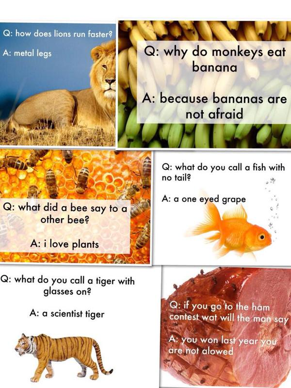 11 Brilliant Jokes Wri...