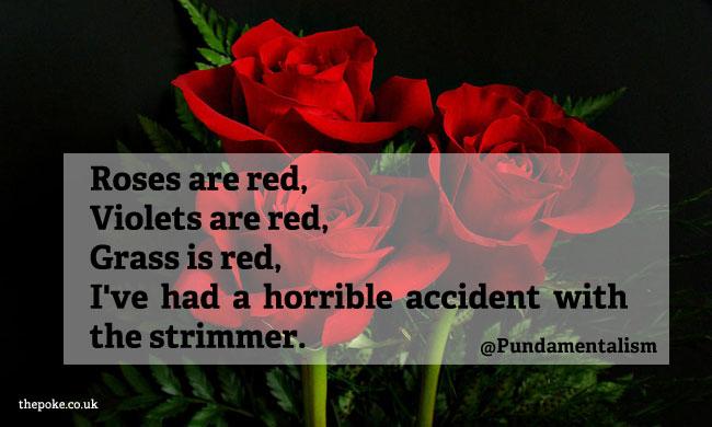 roses_poetry5