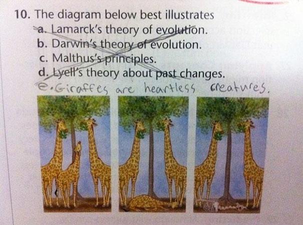 funny-test-answers-smartass-kids-30