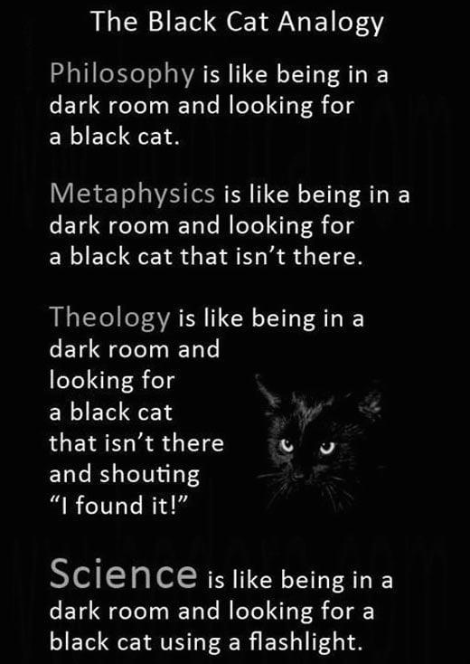 cool-black-cat-evil