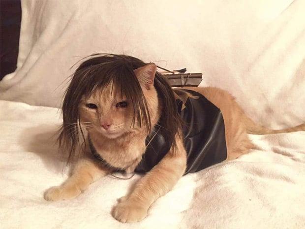 Cat Girl Nails
