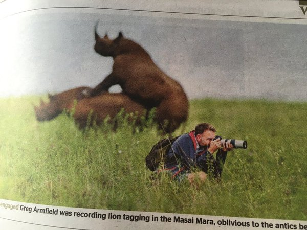 early contender for wildlife photographer of the year the poke
