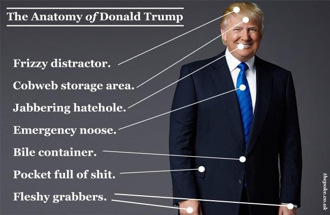 [Image: anatomy_trump.jpg]