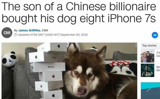 iphonedog
