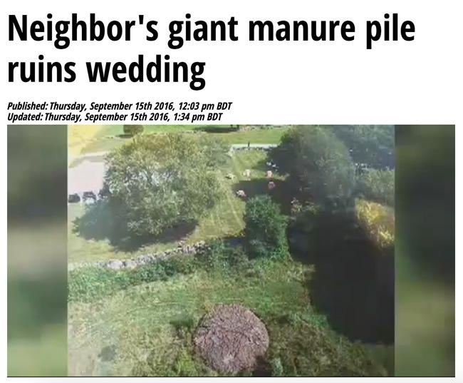 manurewedding