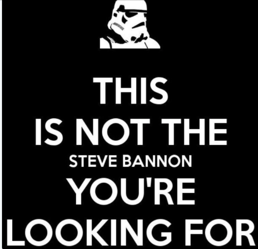 """How the wrong """"Steve Bannon"""" owned his critics on Twitter"""