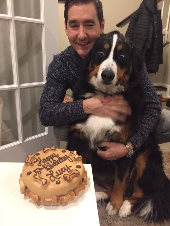 Awesome Proof That Buying A Dog A Birthday Cake Isnt A Waste Of Money The Funny Birthday Cards Online Benoljebrpdamsfinfo