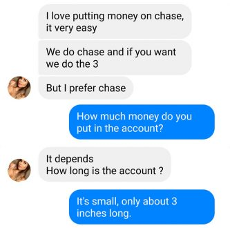 This prankster turned the tables on an online scammer and