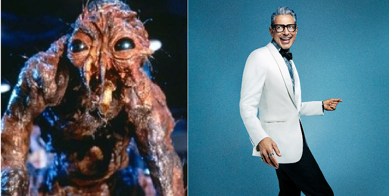 Jeff Goldblum's response to this science article was absolutely perfect