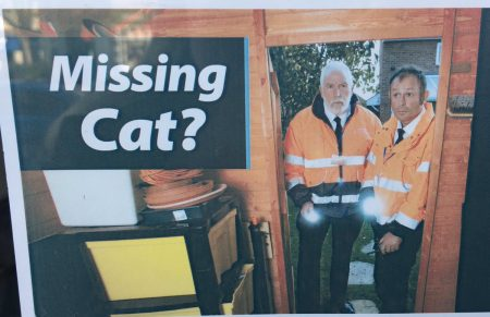 People are totally intrigued by these 'missing cat' detectives and it prompted questions, lots of questions
