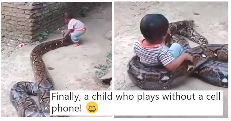 This viral clip of a baby playing with a python is a health & safety nightmare