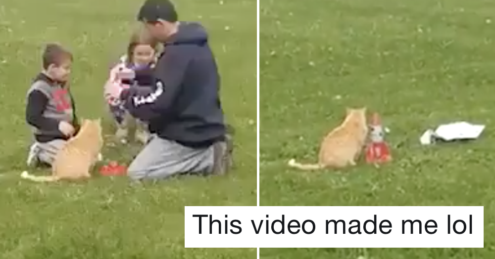 The pay-off to this video might make it the best 11 seconds you spend today