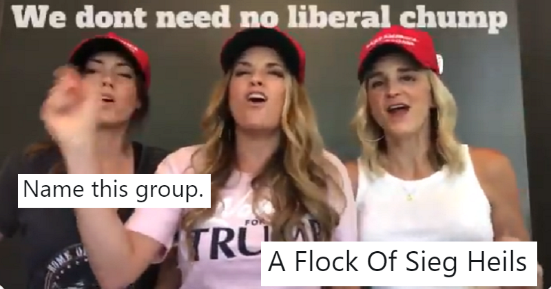 "People are coming up with names for this pro-Trump ""choir"" and these 14 are simply satirical savagery"