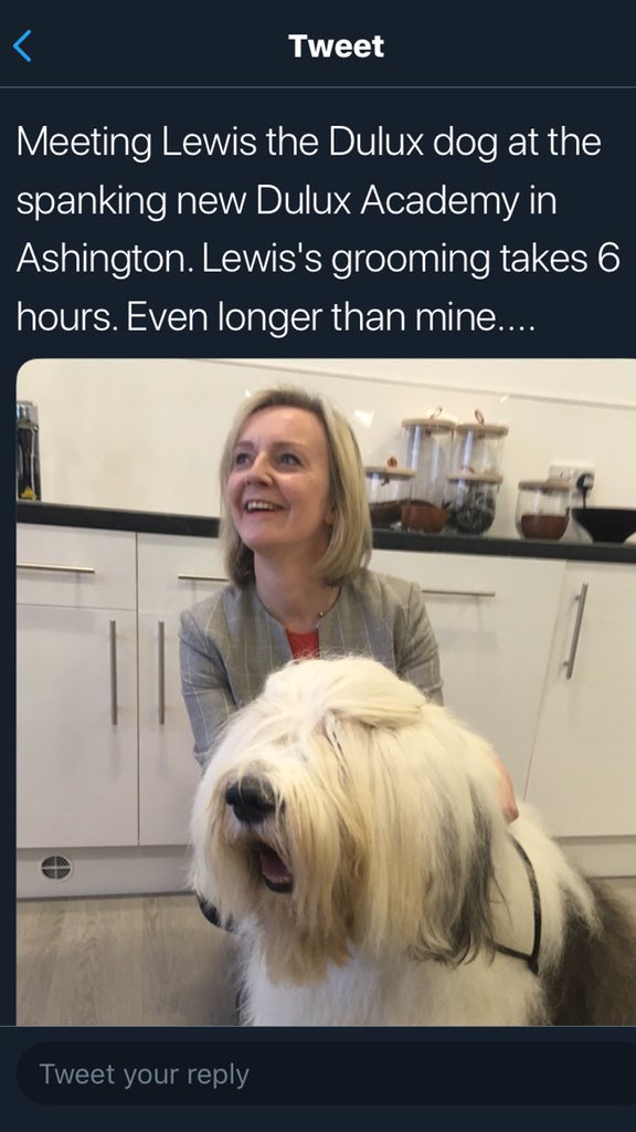 Of all the weird things in this Liz Truss picture, the framed dog photo is the weirdest