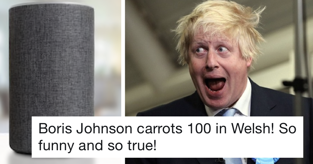 'Say Boris Johnson 100 carrots in Welsh' is the best thing you can ask Alexa