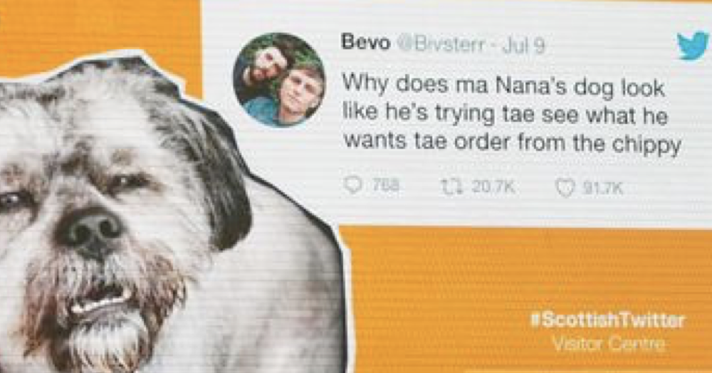 They're celebrating Scottish Twitter at the Edinburgh festival and here are 11 of the best