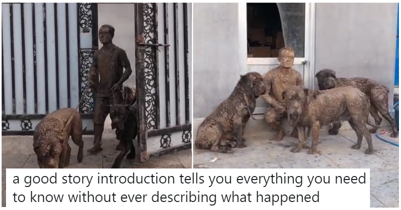 This 19-second clip of a man and his dogs tells a story far better than words could