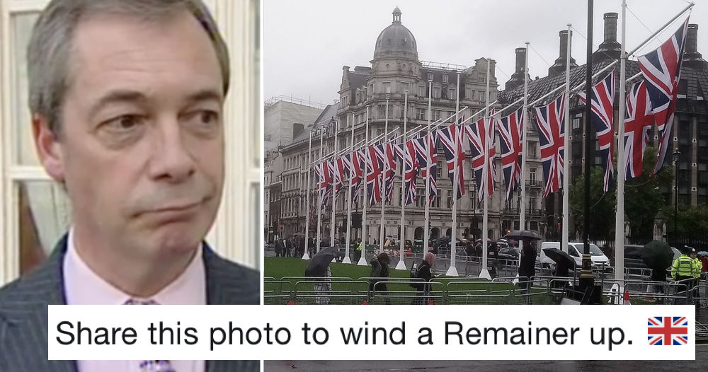 Nigel Farage urged people to share this picture to 'wind up a Remainer' – 5 favourite replies