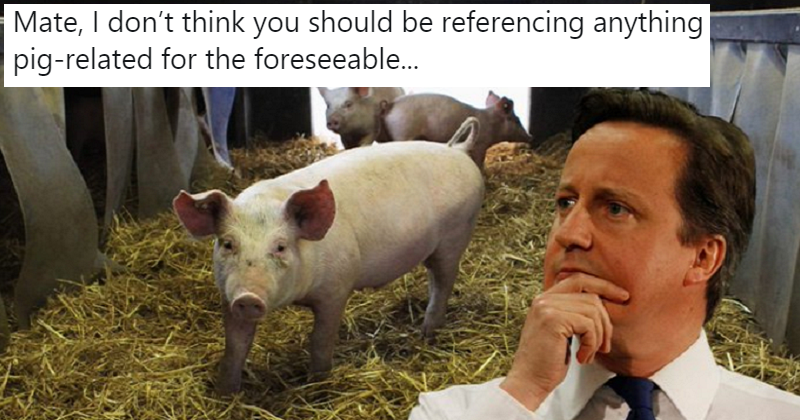 The only 5 reactions you need to David Hameron calling the PM a greased piglet