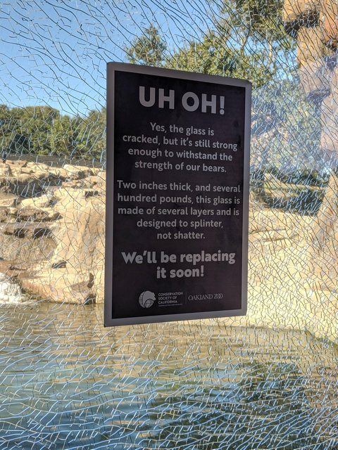 This zoo sign is supposed to reassure visitors to the bear enclosure but it doesn't, it really doesn't