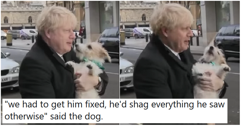 Your 16 funniest captions for Boris Johnson heading to vote with his dog