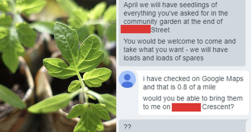 These plants come free but this woman's fury that they're not also delivered to her door is something to behold
