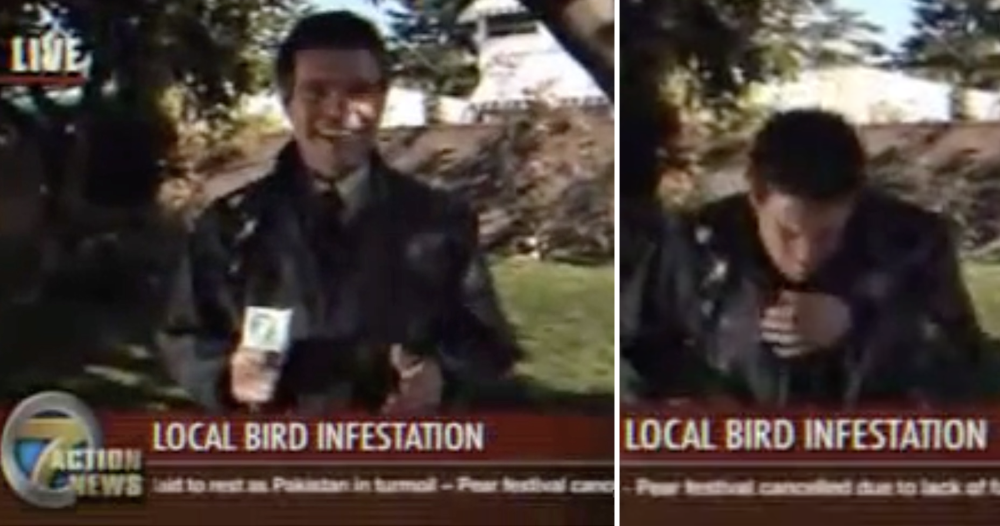 A bird crapped on this reporter's jacket and he learned never to look up with your mouth open - the poke