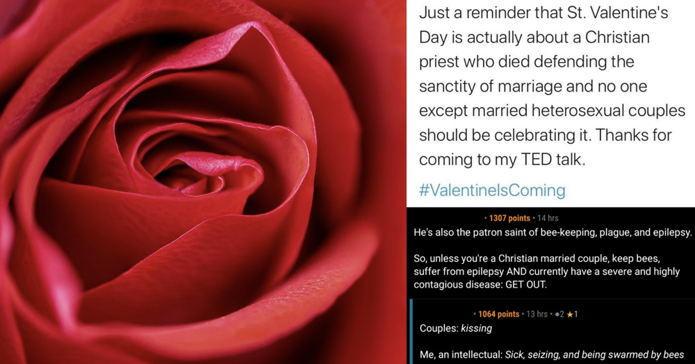 This person said Valentine's Day was for 'married heterosexuals only' and the takedown will warm your heart - the poke