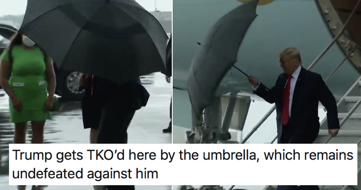 Donald Trump being beaten up by his umbrella is time well spent
