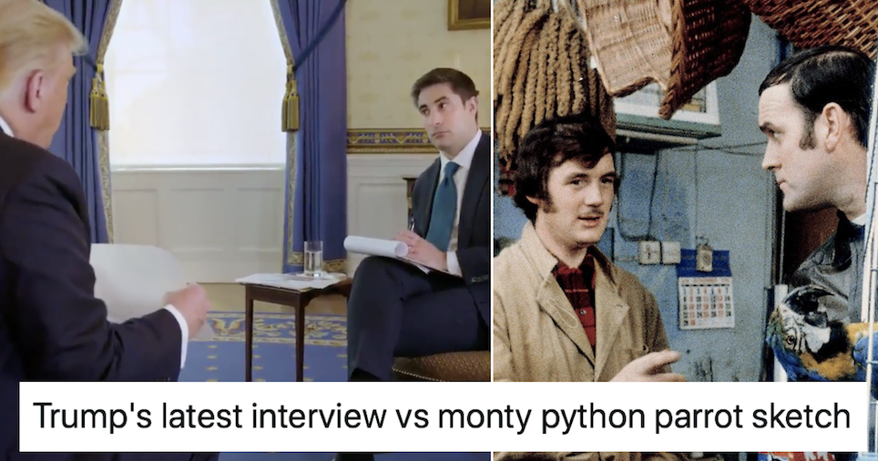 Trump's latest interview works so well with Monty Python's parrot sketch it's uncanny - the poke
