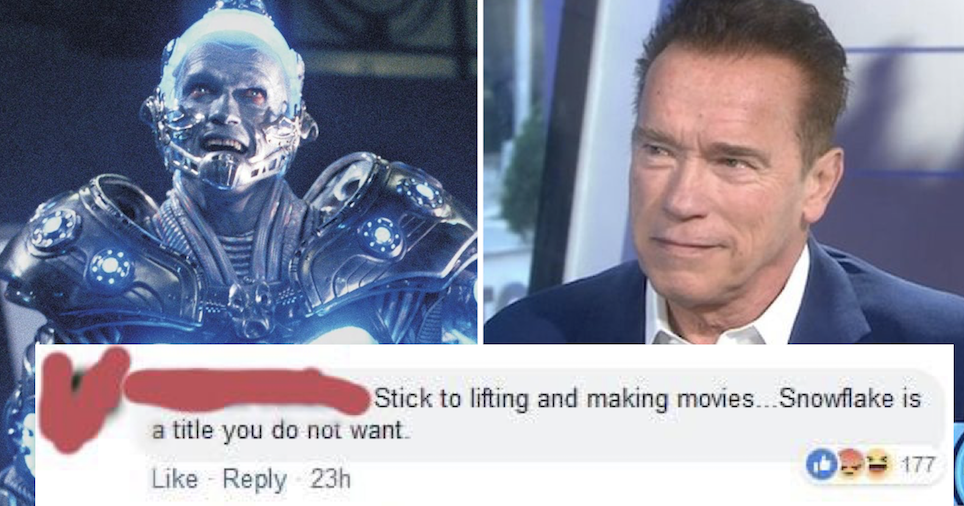 People love Arnold Schwarzenegger's takedown of a troll who called him a 'snowflake' - the poke