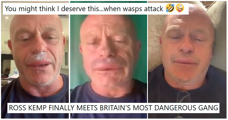 Ross Kemp looked like Homer Simpson after getting into the wrong kind of sting operation – 9 funny responses - the poke
