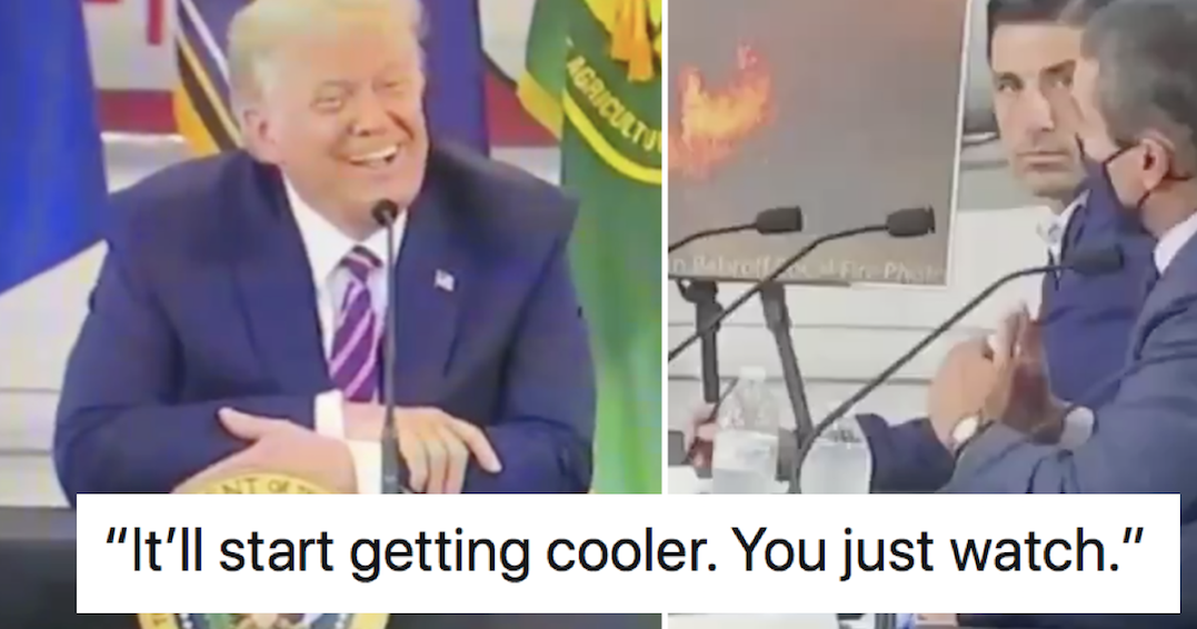 Donald Trump said global warming is about to go into reverse – only 6 responses you need