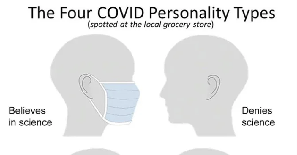 'The 4 Covid personality types' - the poke