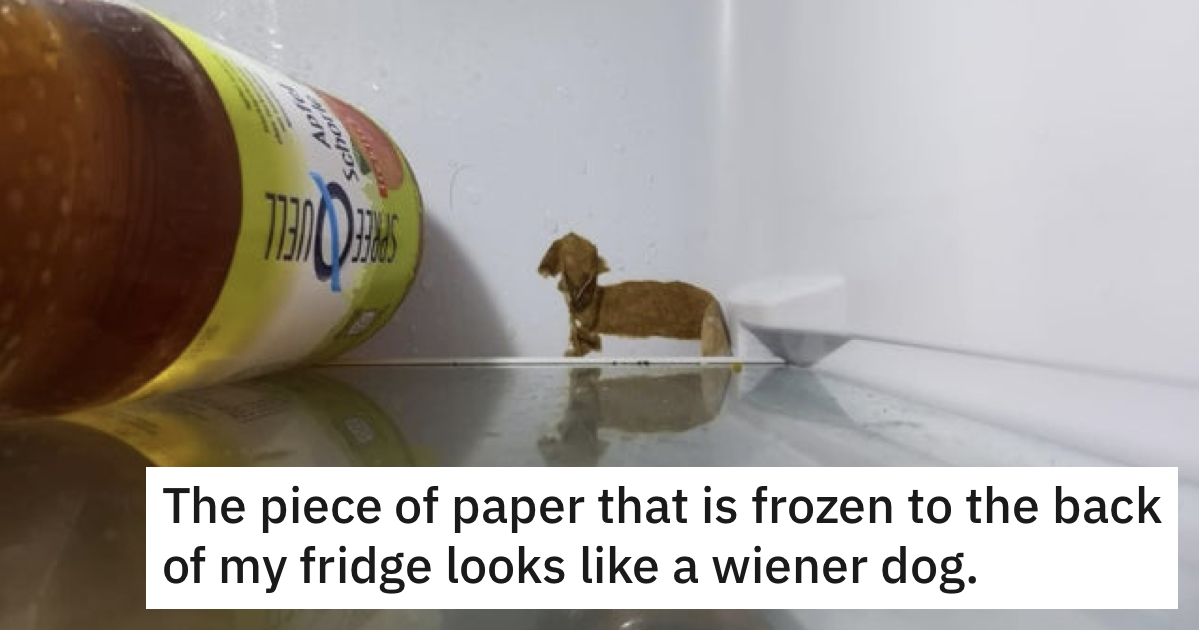 A scrap of paper froze to the back of this fridge and it's a work of art - the poke