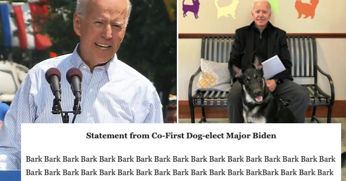 People enjoyed the press release sent by Joe Biden's dog after the president elect's foot fracture