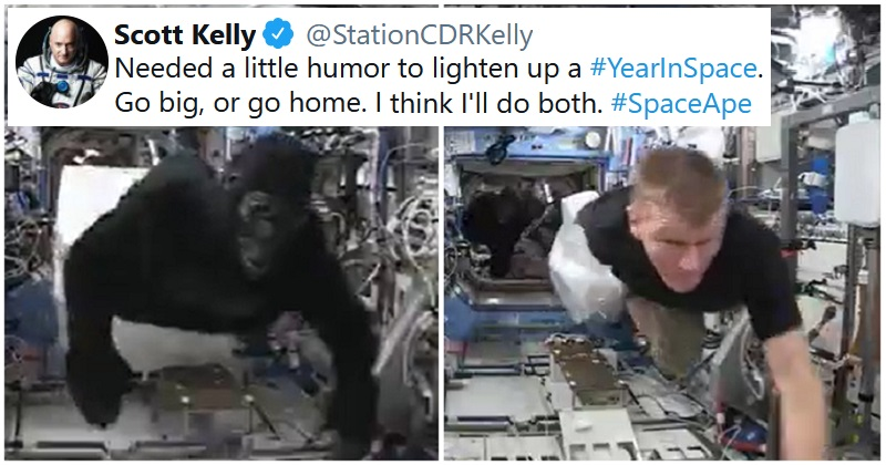 An ISS astronaut in a gorilla suit has gone viral all over again and it's pure slapstick